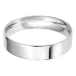 Trendy Gents Platinum Wedding Band